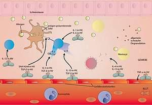 Abb. einer Grafik zur Mikroimmuntherapie
