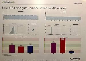 vergleichende Abbildung der VNS-Analyse