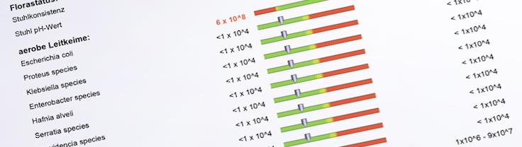 Foto: Auszug aus grafischer Darstellung der Laborergebnisse von medivere-diagnostics
