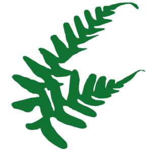 Farnlogo für Naturlehrerin Birgit Straka