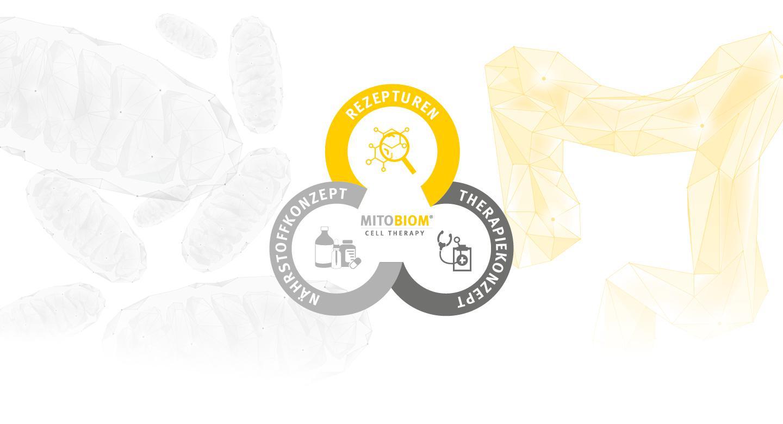 Banner zum MitoBiom-Konzept von Tisso