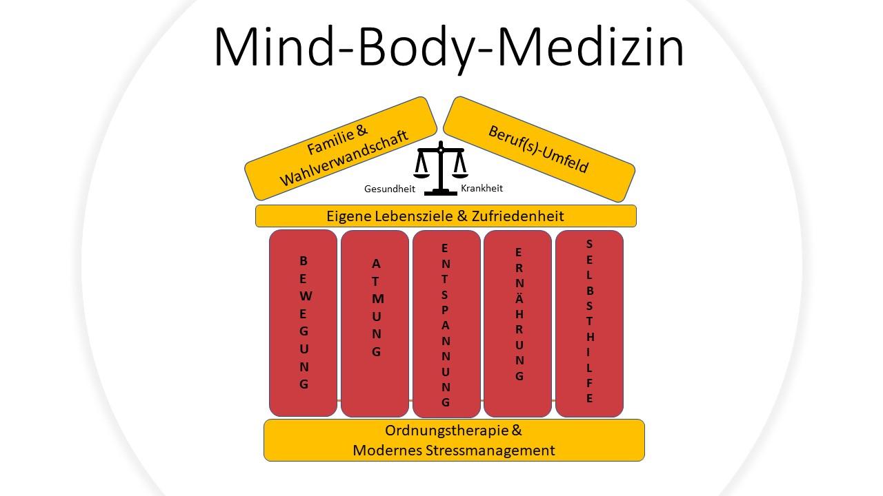 Diagramm: mind body medizin bei Claudia Dippel