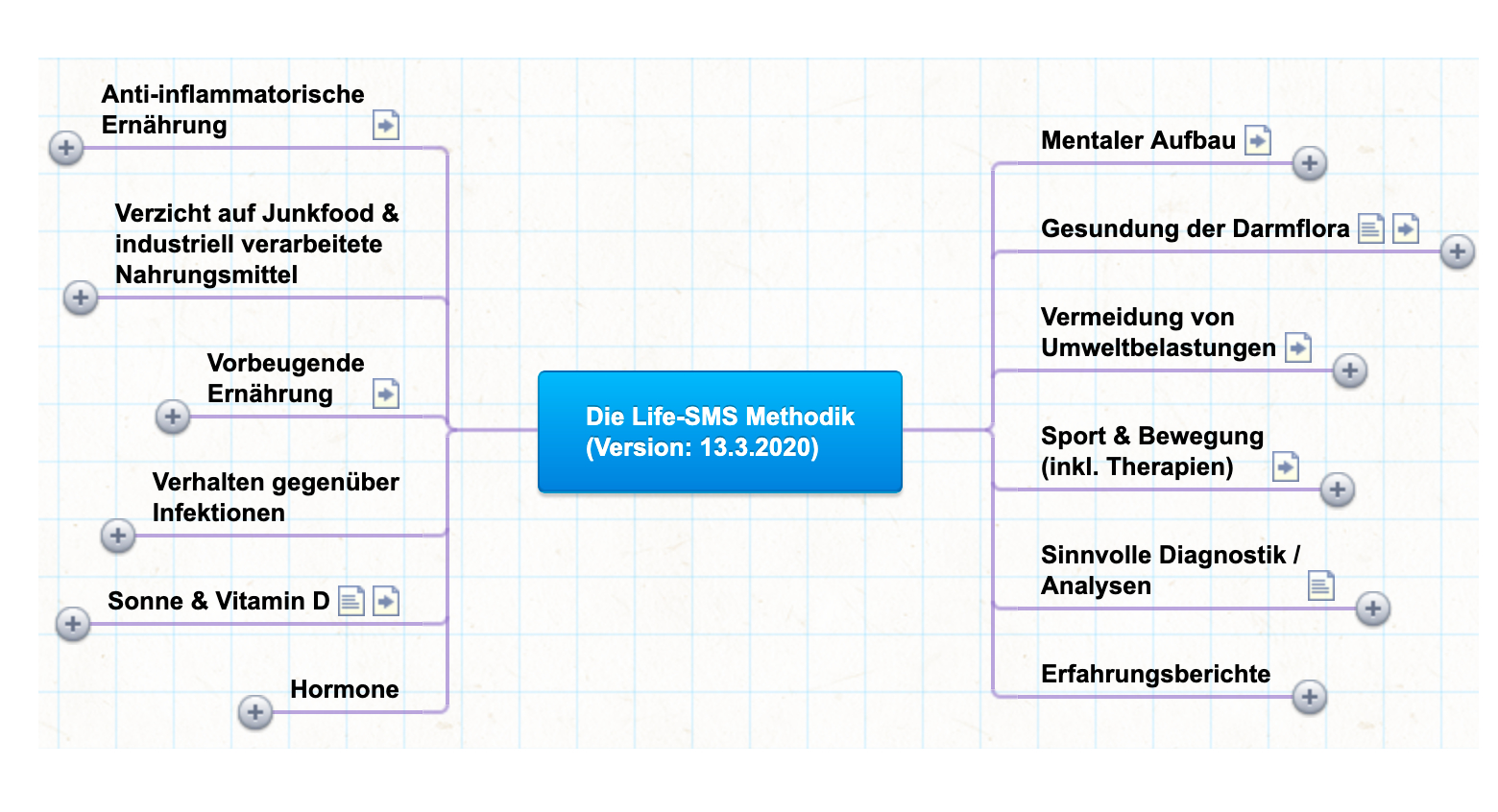 Preview der MindMap zur Life-SMS-Methodik