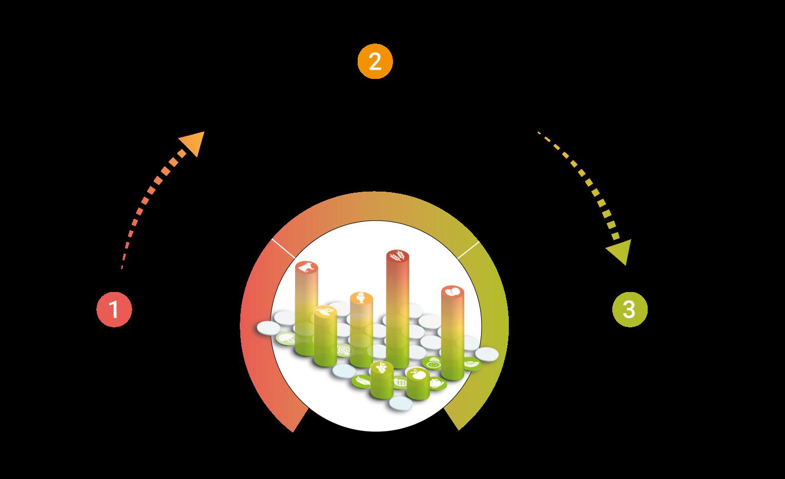 Illustration zum Bluttest-Ablauf von AMM-Netzwerkpartner Biobalance