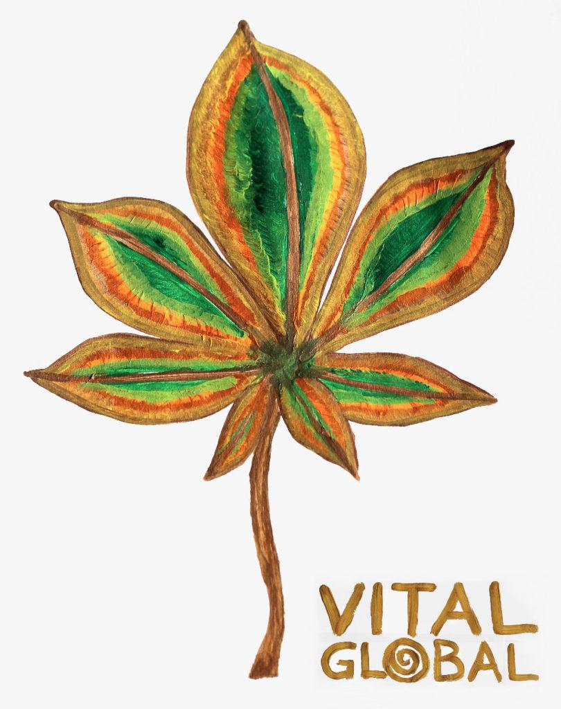 """Logo von AMM-Netzwerkpartner """"Vital Global"""" – Hörfarter"""