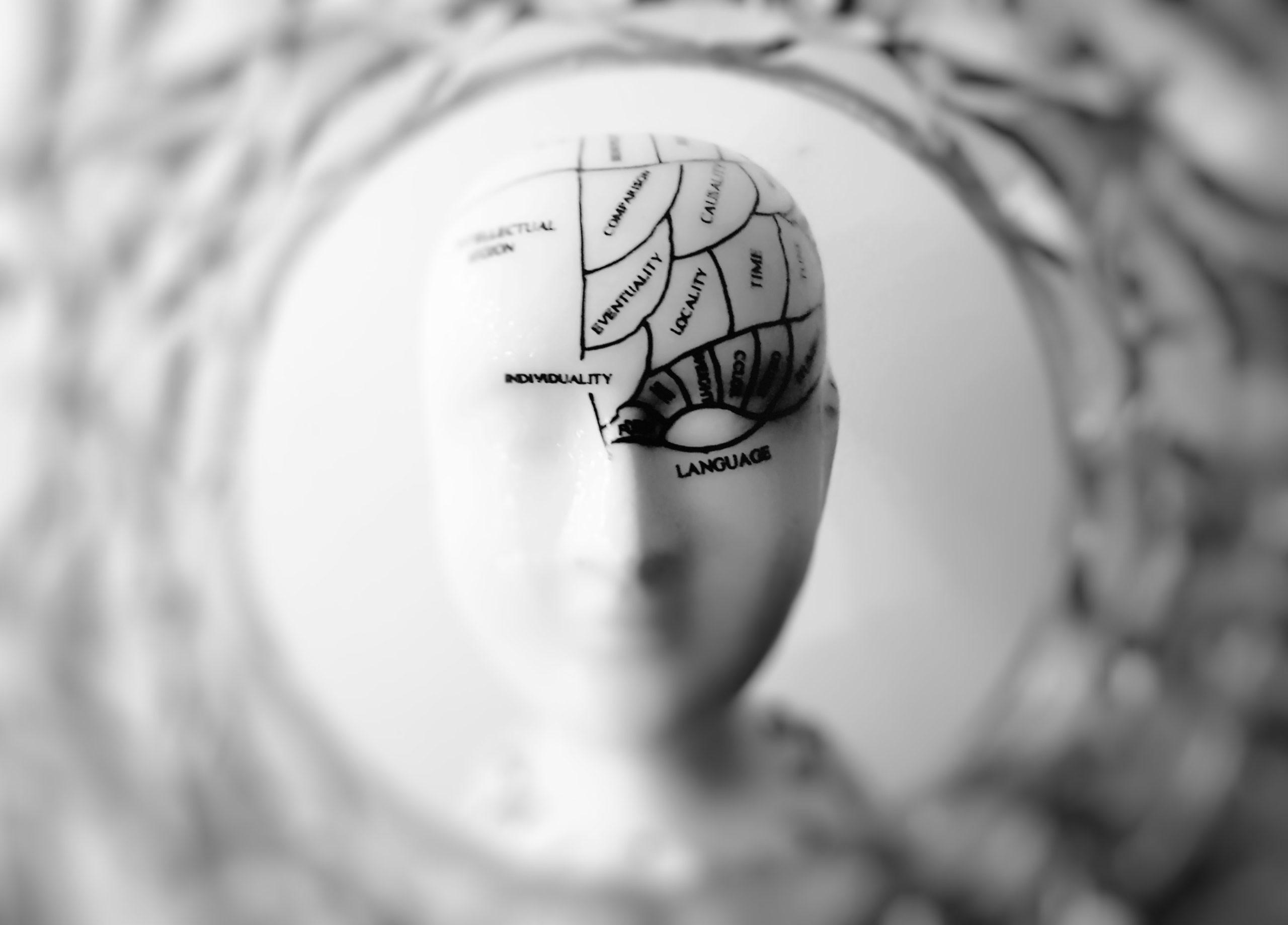 Stylistische Darstellung eines menschlichen Gehirns