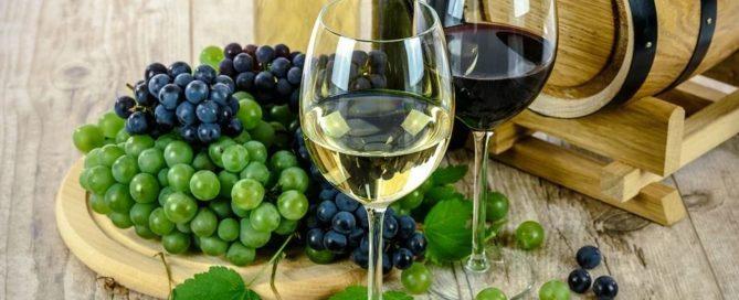 Wein bei Multipler Sklerose